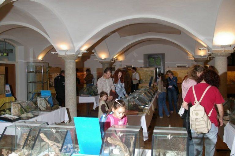 Ausstellung15