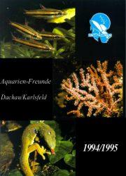 AFDK-Journal 1995