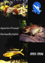AFDK-Journal 1996