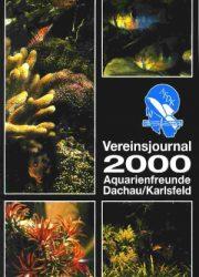 AFDK-Journal 2000