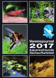 AFDK-Journal 2017