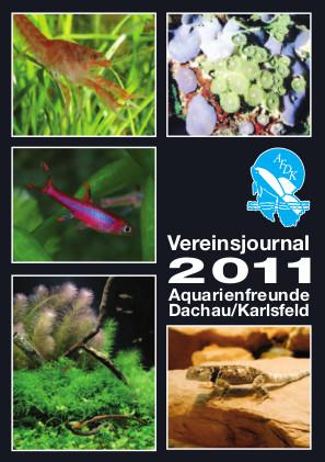 AFDK-Journal 2011