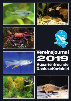 AFDK-Journal_2019